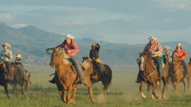 utah ranchers galloping on horses - gallop animal gait stock videos & royalty-free footage