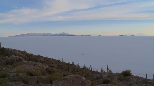 uyuni salt flats and andean landscape, , bolivia - cactus silhouette stock videos & royalty-free footage