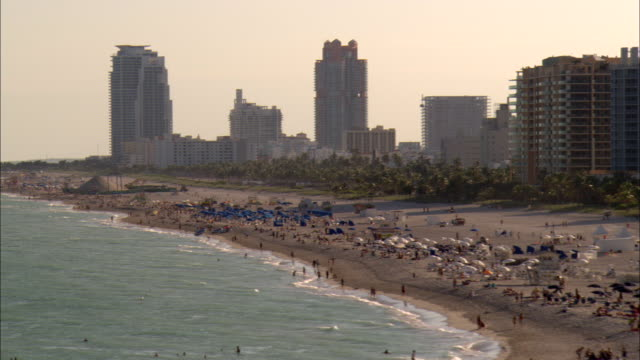 vacationers crowd a beach in miami. - gulf coast states stock-videos und b-roll-filmmaterial