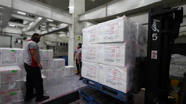 vidéos et rushes de covid vaccine warehouse - box container