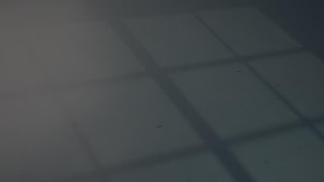 vacuum-sealed chicken fillet - 密閉点の映像素材/bロール