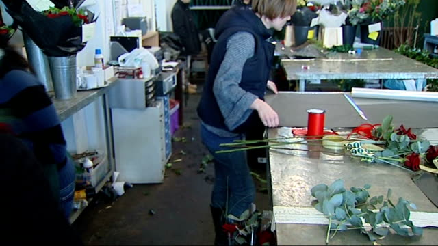 valentine's day florists preparing flowers / delivery of imported flowers england london mcqueens flower shop int general views of florists preparing... - single rose stock videos & royalty-free footage