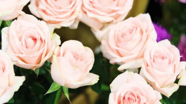 vídeos de stock, filmes e b-roll de dia dos namorados rosas - bouquet