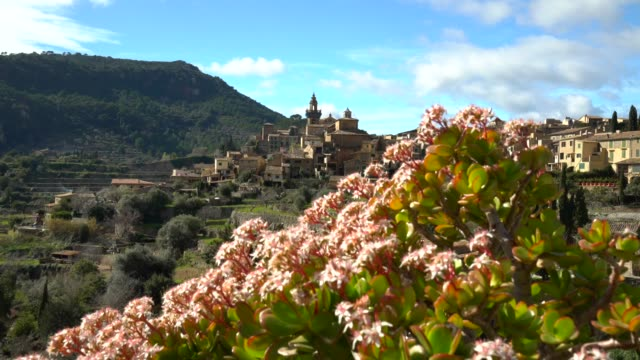 valldemosa mallorca with flowers - majorca stock videos & royalty-free footage