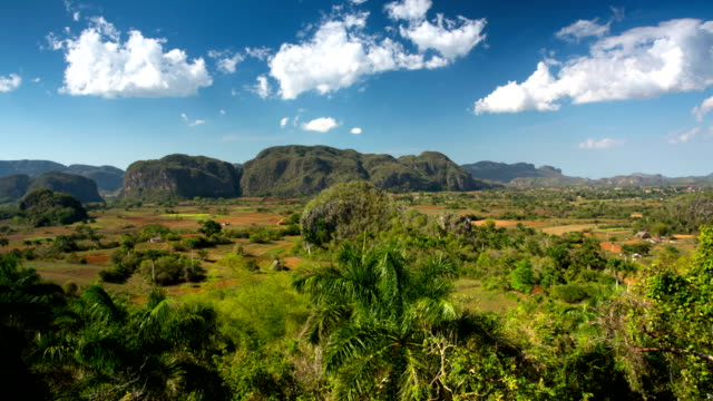 vidéos et rushes de vallée de viñales tabacco plantations, cuba - valley