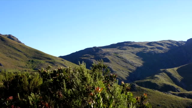 ws ms zi valley and  blue sky / mont rochelle nature reserve/ franschhoek/ western cape/ south africa - franschhoek stock videos and b-roll footage