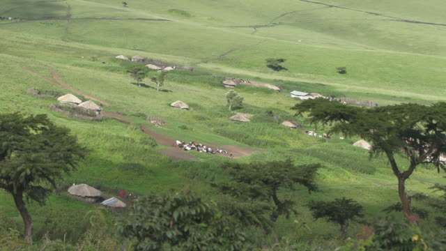 stockvideo's en b-roll-footage met valley huts in distance in tanzania - wiese