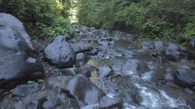 valley in bali / indonesia - enge stock-videos und b-roll-filmmaterial