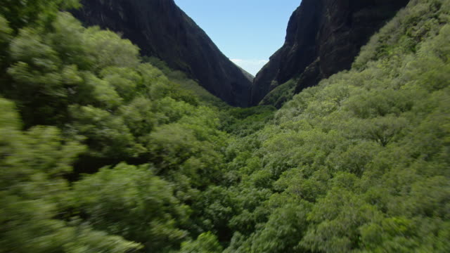valley in mauna kahalawai mountains that leads to the pacific ocean on the west coast of maui, hawaii. - 谷点の映像素材/bロール