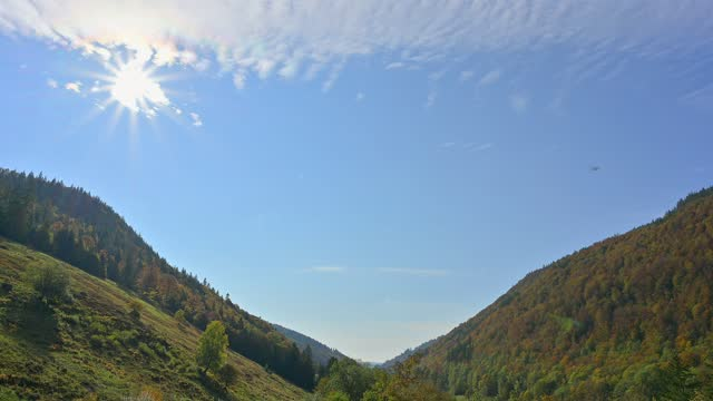 valley river wiese with sun in autumn, todtnau, schwarzwald, baden-württemberg, germany - wiese stock videos & royalty-free footage