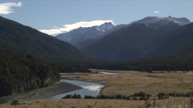 ws valley with mt aspiring in background, mt aspiring national park, new zealand - new zealand stock-videos und b-roll-filmmaterial
