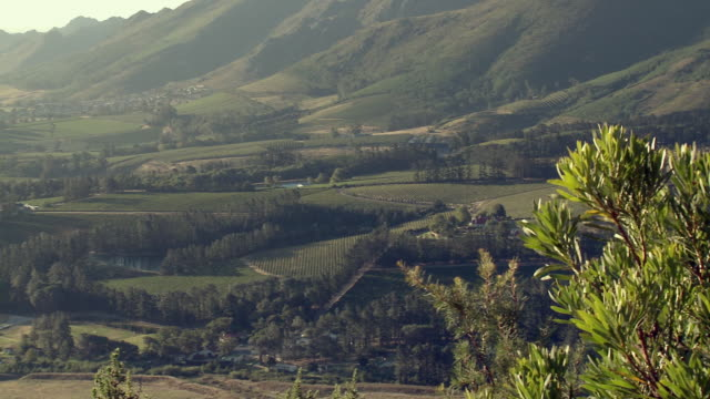 ws ha pan valley with vineyards, franschhoek, western cape, south africa - franschhoek stock videos and b-roll footage