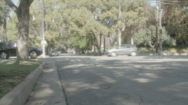 TS A van making a right turn and driving down tree-lined street / Pasadena, California, United States