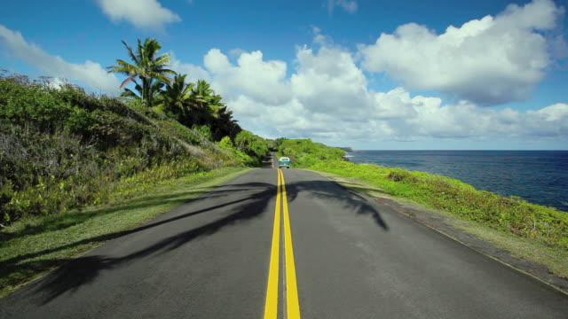 T/L WS Van on coastal road with coconut trees / Kehena, Hawaii, USA