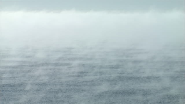 vapour rising from the sea in hokkaido - condensation stock videos and b-roll footage