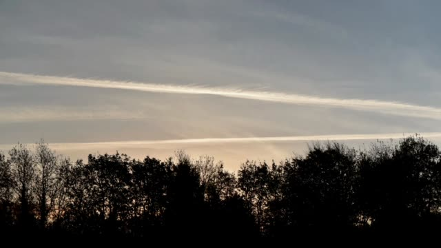 Vapour trails in the morning light