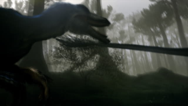 a variety of dinosaurs, including tyrannosaurus rexes, triceratops, and quetzalcoatluses, inhabit a forest in a computer-generated animation. - triceratops stock videos and b-roll footage