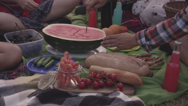 variety of fresh fruit and vegetables being enjoyed on a picnic - picnic stock videos & royalty-free footage