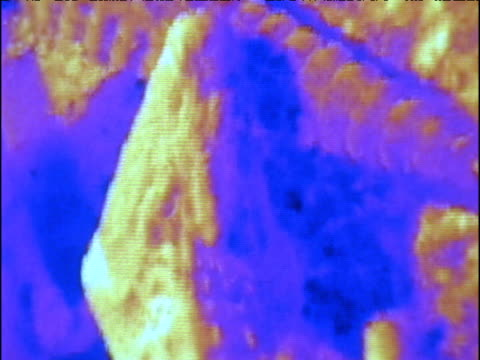 Various blurred and pixilated thermal images of basking crocodiles on monitor