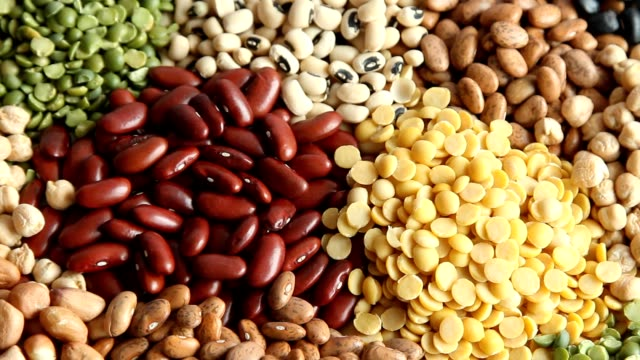 various dry legumes - soya bean stock videos & royalty-free footage