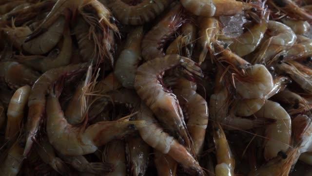 various fish are displayed at a fishmongers stall at stutong wet market in kuching, sarawak, malaysia, on wednesday, april 14 a customer waits at a... - サラワク州点の映像素材/bロール