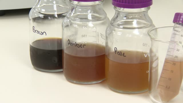 various flavors of beer sit in labeled glass jars in a laboratory room inside the brew hub brewery in lakeland florida samples of beer sit on a... - phiole stock-videos und b-roll-filmmaterial