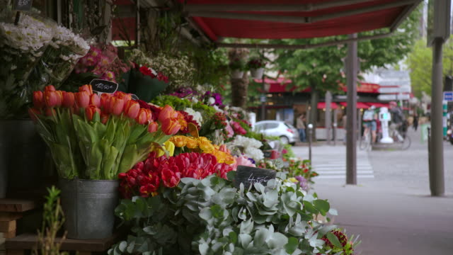 MS Various flowers for sale in market stall / Paris, France
