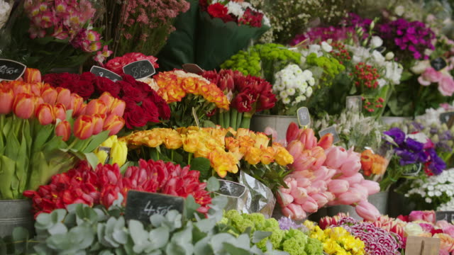 ms td various flowers for sale in market stall / paris, france - bunch of flowers stock videos and b-roll footage