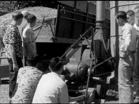 various high school students watching farmer rake hay from back of truck into grinder male student using electric chainsaw to cut base of thin tree... - hay truck stock videos & royalty-free footage