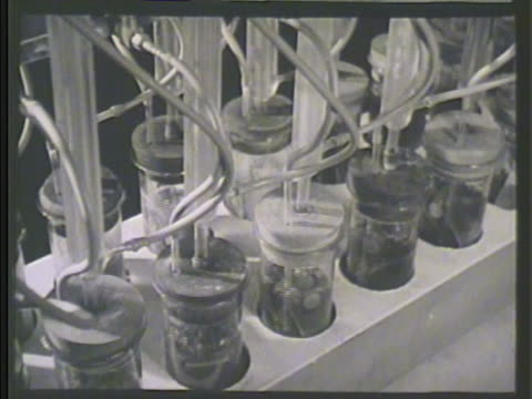 various jars lined up w/ motor cooling solution metal strips during corrosion test air tubes creating circulation liquid - liquid solution stock videos and b-roll footage