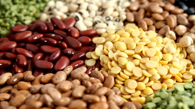 various legumes beans - bean stock videos & royalty-free footage
