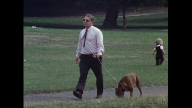 various people walking their dogs in hyde park; 1971 - small group of animals stock videos & royalty-free footage