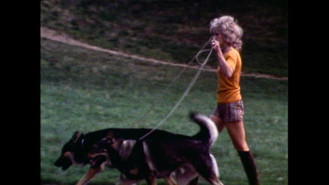various people walking their dogs in hyde park; 1971 - letterbox stock videos & royalty-free footage