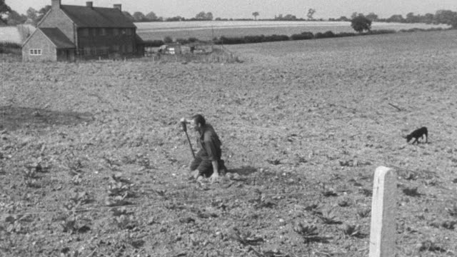 stockvideo's en b-roll-footage met montage various physically handicapped individuals going about their daily routine performing their jobs, working on the farm, walking about town, climbing ladder, and delivering the mail / united kingdom - prothesen