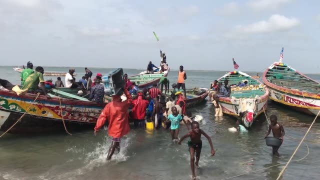 various shots as senegalese fishermen are seen in saloum delta at the port of djiffer senegal on august 05 2019 - fishing stock videos & royalty-free footage