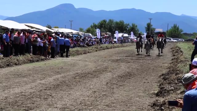 various shots during 5th pacer horses race held by turkish traditional sport branches federation in turkey's southern osmaniye province on june 30... - traditional sport stock videos & royalty-free footage