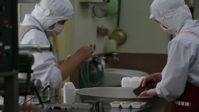 various shots employees fill polystyrene trays with steamed soybeans for making fermented soybeans, known as natto, at the matsushita shoten y.k.... - bacillus subtilis stock videos & royalty-free footage