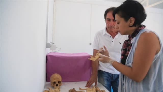 various shots from euromos ancient site in which the ruins of 2200yearold bones of a man skeletion found which appears to had a brain surgery in... - mugla province stock videos & royalty-free footage