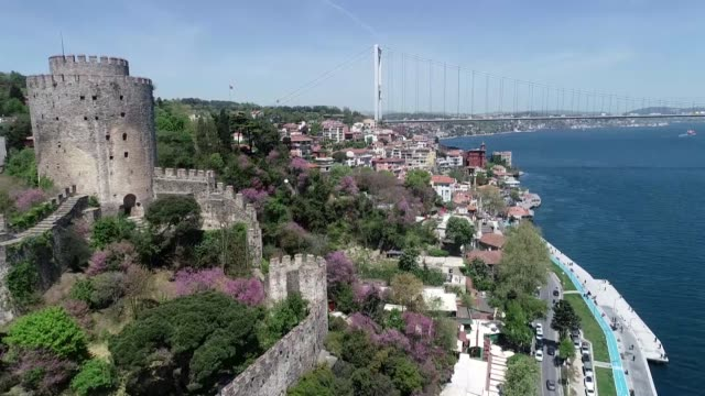 various shots from judas trees around rumelian fortress in istanbul on april 30 2019 with the arrival of spring judas trees or 'eastern redbud' are... - marmara stock videos and b-roll footage