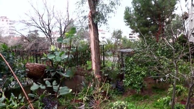 Various shots from the damage as storm hits Izmir western Turkey on January 18 2018