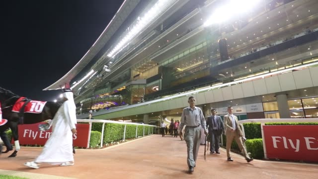 Various shots jockeys and trainers lead out race horses to the parade ring at the Meydan Racecourse at night in Dubai United Arab Emirates on...