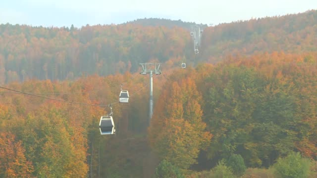 various shots of a foliage of autumncolored mixed trees in uludag mountain in the northwestern turkish province of bursa on october 19 2018 - uludag stock videos and b-roll footage