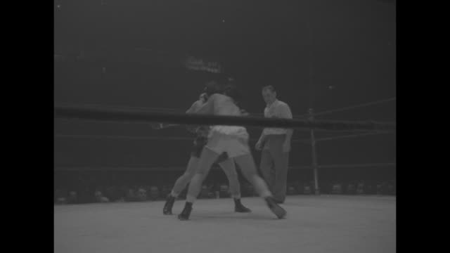 various shots of amateur boxing match between pasquale cesare and david giles in finals of diamond belt championship tournament at madison square... - amateur stock videos & royalty-free footage