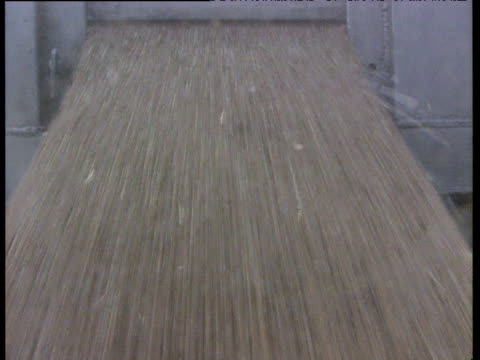 vidéos et rushes de various shots of grain pouring through silos from rear of container lorries in factory including grain filling screen uk - silo