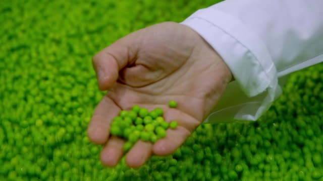 various shots of peas in a factory - rolling stock videos & royalty-free footage