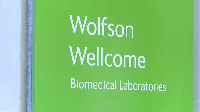 vídeos de stock e filmes b-roll de various shots of the wolfson wellcome biomedical laboratories at the natural history museum including shots of specimen jars containing various... - porta amostra