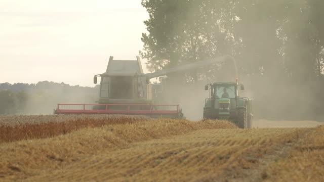 various shots of wheat harvesting in kent, u.k. on wednesday, august 5, 2020. - harvesting stock videos & royalty-free footage