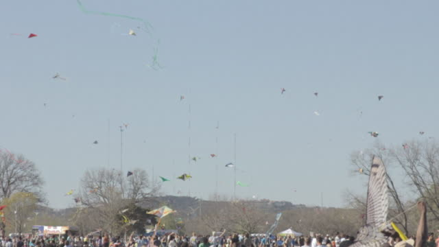 stockvideo's en b-roll-footage met various styles of kites all being flown at the same time - southwest usa