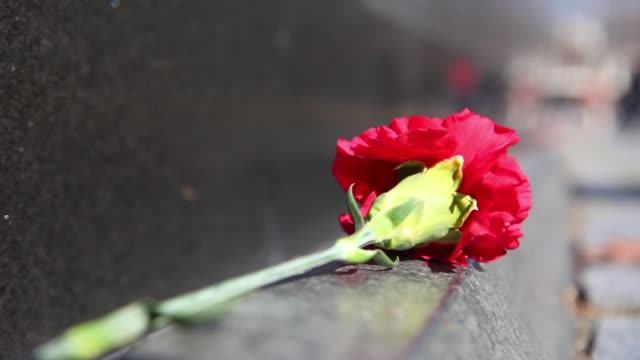 vidéos et rushes de various views and angles of vietnam memorial / tourists taking photos and looking at wall of names / roses laid down in front of wall / tourists... - mémorial