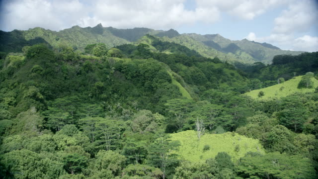 various views (tiling) kauai, hawaii valley ridges - カウアイ点の映像素材/bロール